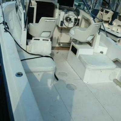 22 Ft Grady White Seafarer